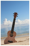 Ukulele on the Beach  Ukulele Hawaii